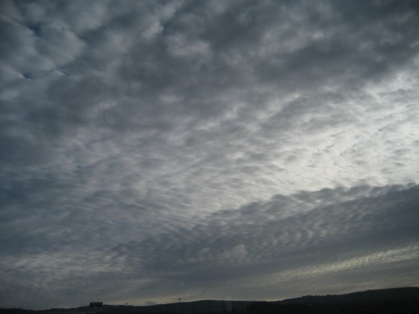 © 2012 S. D. Stewart, Sky above San Francisco International Airport