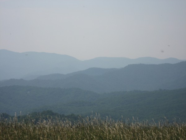 © 2012 S. D. Stewart, Max Patch Trail, Hot Springs, North Carolina
